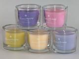 Svíčka Aromatherapy s vůní vanilky ve skle