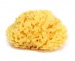 Houbička na mytí - mořská houba Honeycomb 12 OK Baby